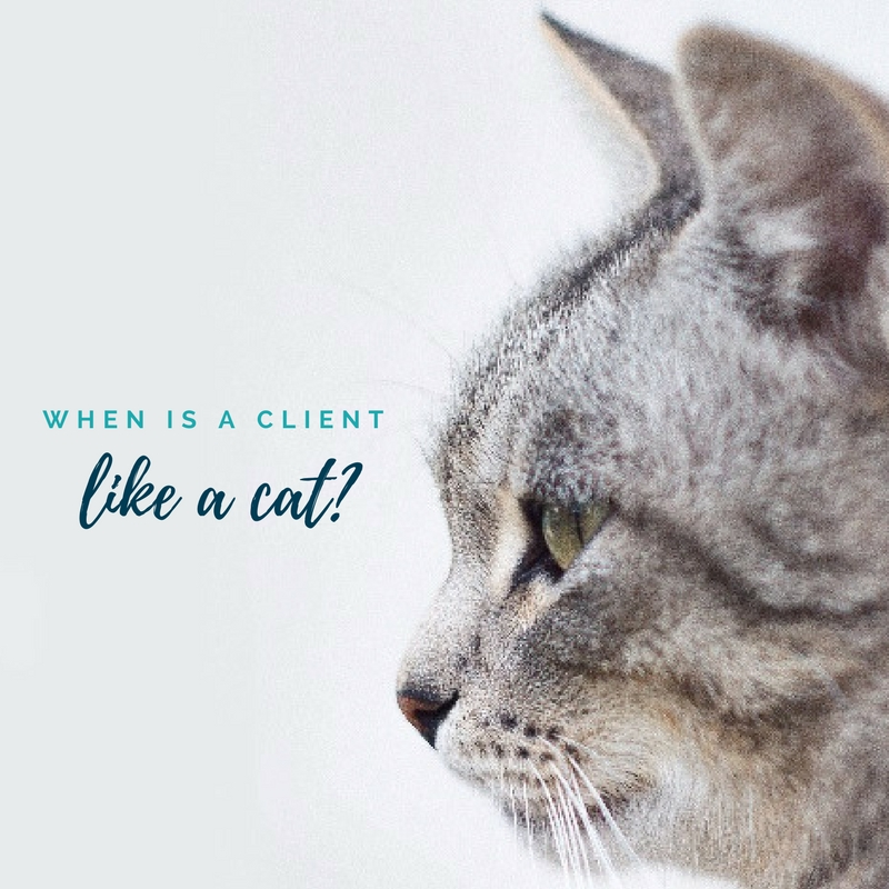 When is a client like a cat?